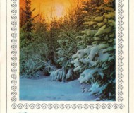 """Зимний лес и текст """"С Новым годом!"""""""