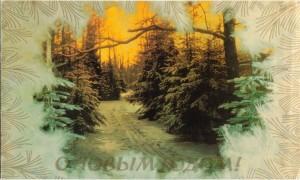 Зимний лес - будто бы вид из окна