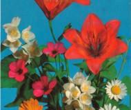 Композиция, собранная из садовых цветов