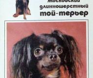 открытки с собаками