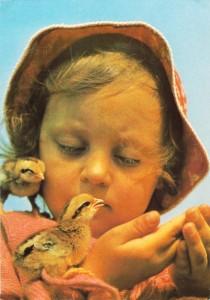 картинка птенцы