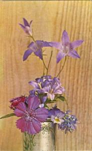 картинки полевые цветы