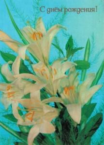 язык цветов - белая лилия
